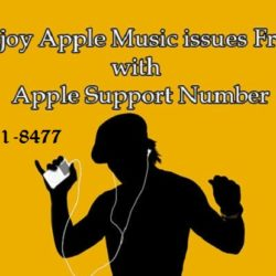iTunes Support Number